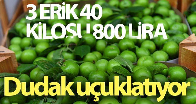 3 erik 40, kilosu 800 liraya satılıyor