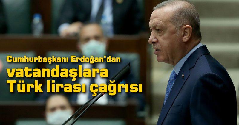 President Erdoğan's call for Turkish lira to citizens