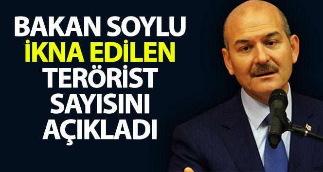 Bakan Soylu ikna edilen terörist sayısını açıkladı