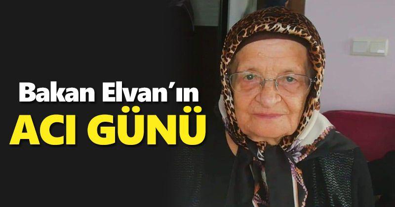 Minister Elvan's Aunt Died