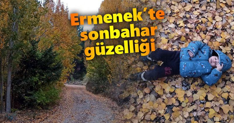 Autumn landscapes in Ermenek