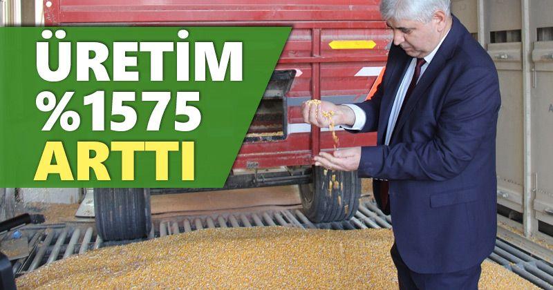 Konya Şeker; 'üretim %1575 arttı'