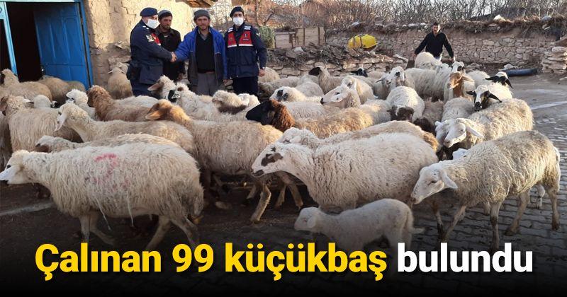 Çalınan 99 küçükbaş bulunarak sahibine teslim edildi