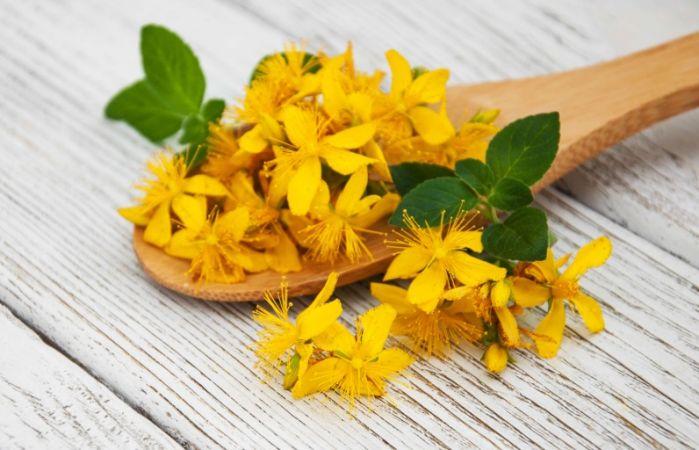 Mucizevi Sarı Kantaron Yağı Faydaları ve Özellikleri