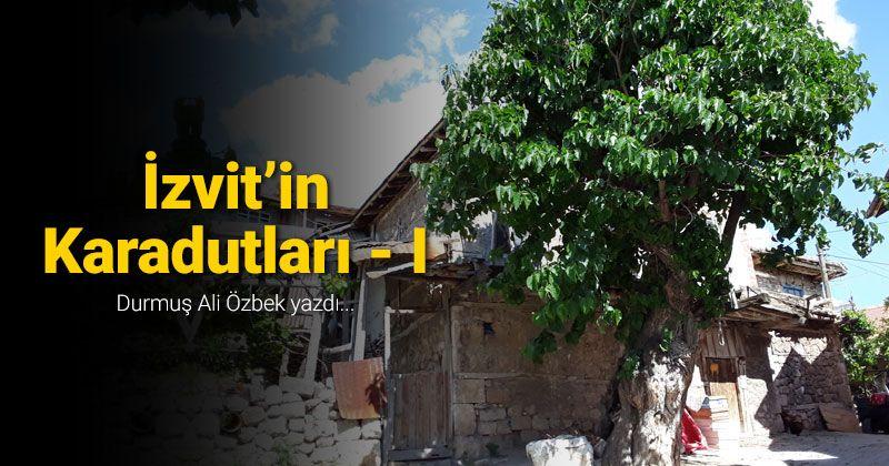 Black Mulberries of Izvit - I