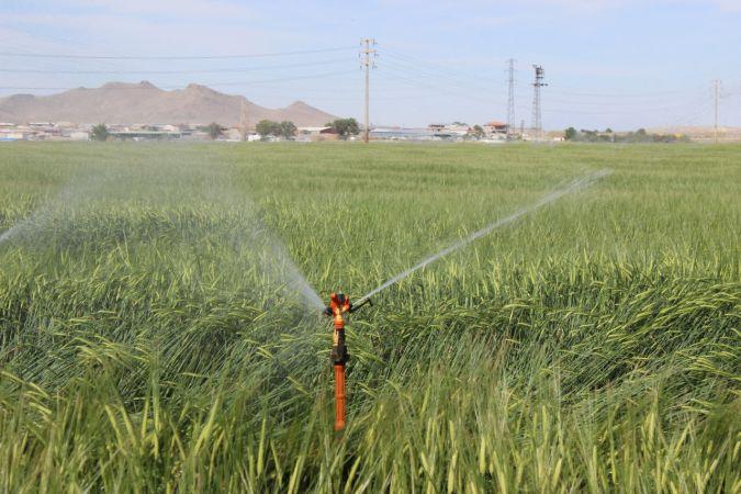Karapınar'da kuraklık nedeniyle yeraltı suyu kullanımı arttı