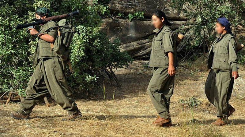 Terör örgütünden kaçan 3 PKK'lı teslim oldu