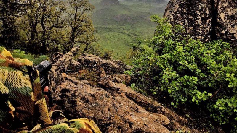 Mehmetçiğe ateş açan 2 PKK'lı etkisiz hale getirildi