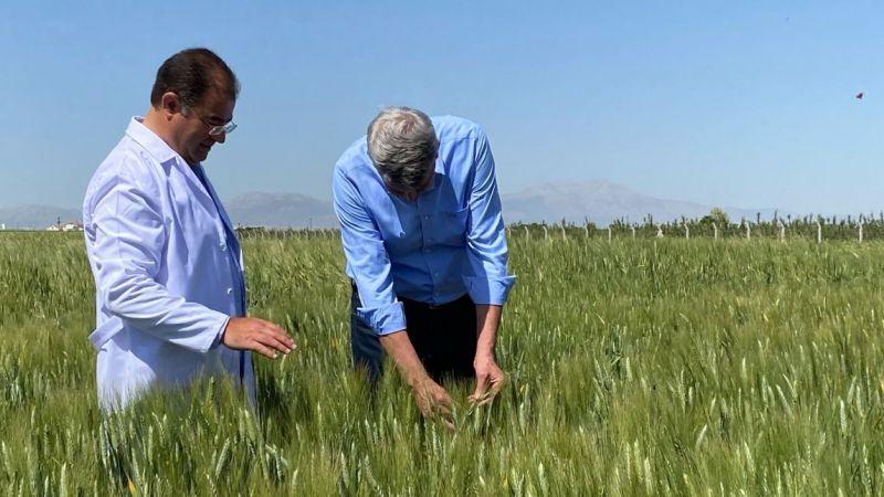 Duru Bulgur ve KMÜ'nün ortak projesi yerli tohum dünyaya açılıyor