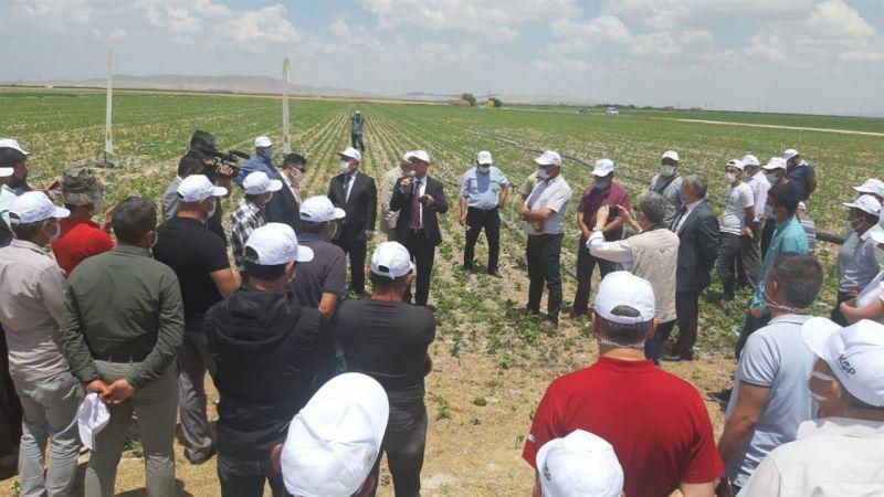 Karaman'da kurağa dayanıklı çeşitlerin tanıtılması için tarla günü düzenlendi