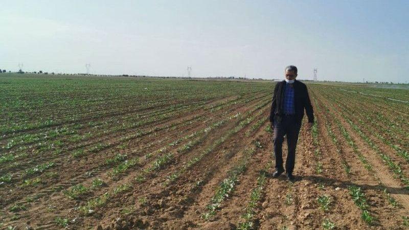 Konya Şeker'den 57 milyon 210 bin TL'lik nakit avans desteği