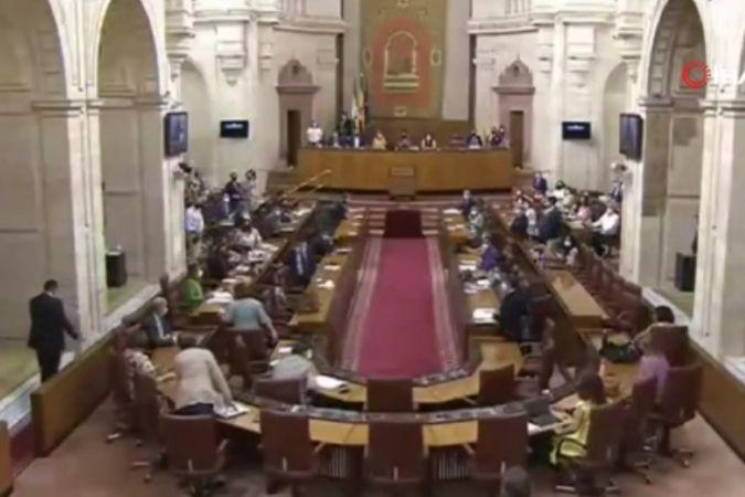 Endülüs Parlamentosu'na giren fare ortalığı karıştırdı