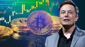 Elon Musk'tan Bitcoin açıklaması!