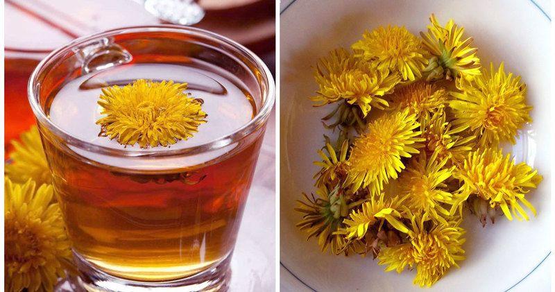 Hindiba otunun faydaları nelerdir? Hindiba çayı nasıl hazırlanır?