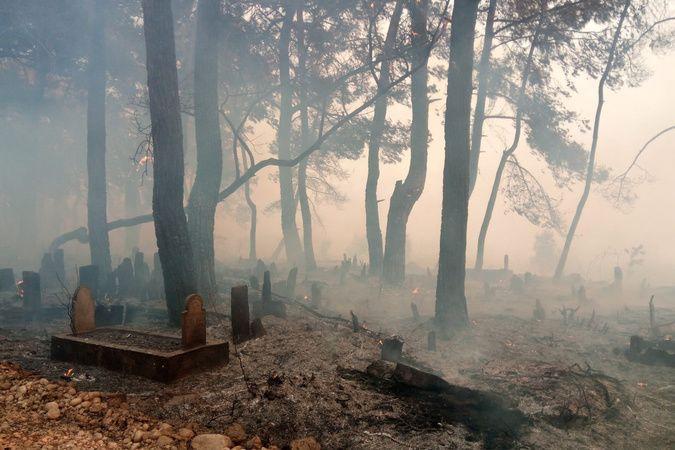 Manavgat'taki yangın mezarlıkları bile küle çevirdi