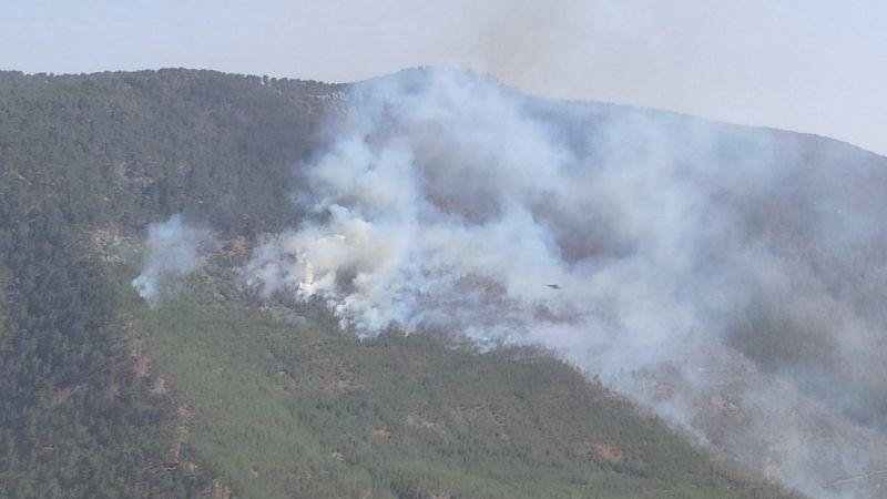 Mersin'de çıkan orman yangınına havadan ve karadan müdahale ediliyor