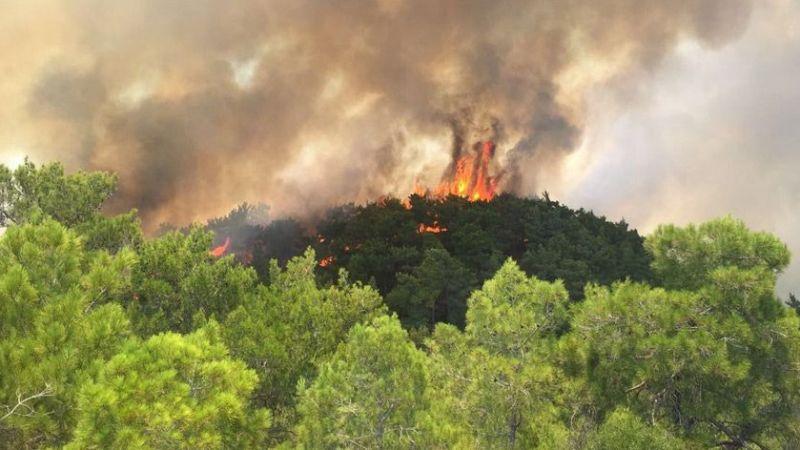 Bakan Pakdemirli: Yangında arazözümüz devrildi, şoförümüzün durumu ağır