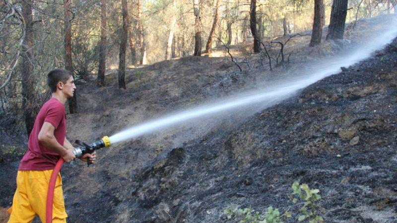 Hatay'da çıkan orman yangını kontrol altına alındı