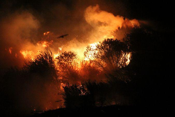 Otluk alanda çıkan yangın kontrol altına alındı