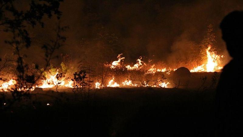 Kuzey Makedonya orman yangınları nedeniyle 'kriz durumu' ilan etti