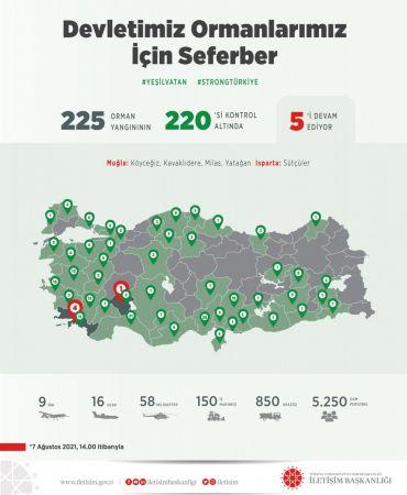 225 orman yangınının 220'si kontrol altına alındı