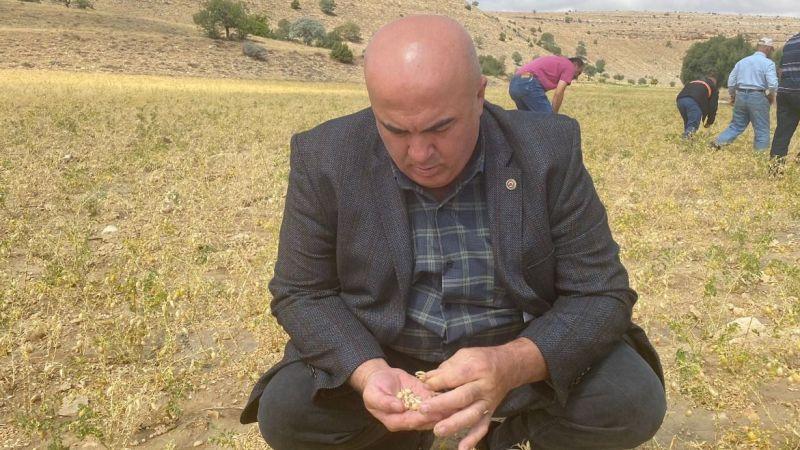 Karaman'da aniden yağan dolu, nohut tarlalarına zarar verdi