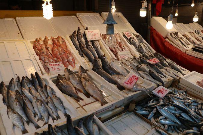 Balıklardaki tehlikeye dikkat!