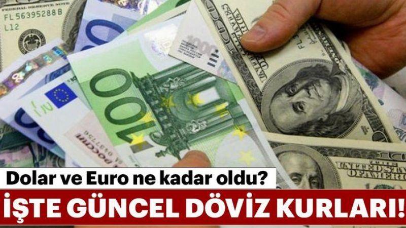 10 Ağustos Dolar Euro Kur Fiyatları