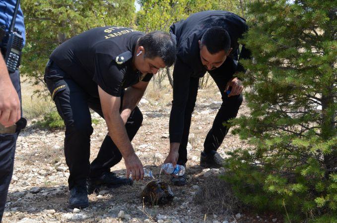 Karaman'da yangının ortasında kalan kaplumbağayı polisler kurtardı