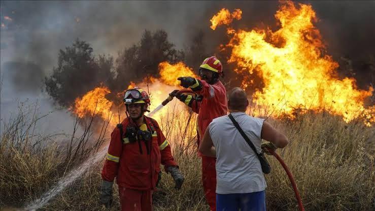 Yunanistan'da yangın felaketinin boyutları açıklandı