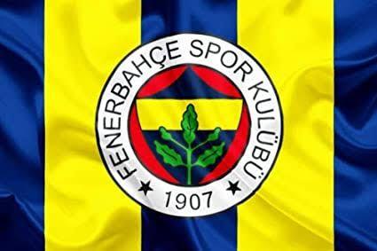 Fenerbahçe'nin talebini TFF kabul etti: Yıldızlar kaldırıldı!