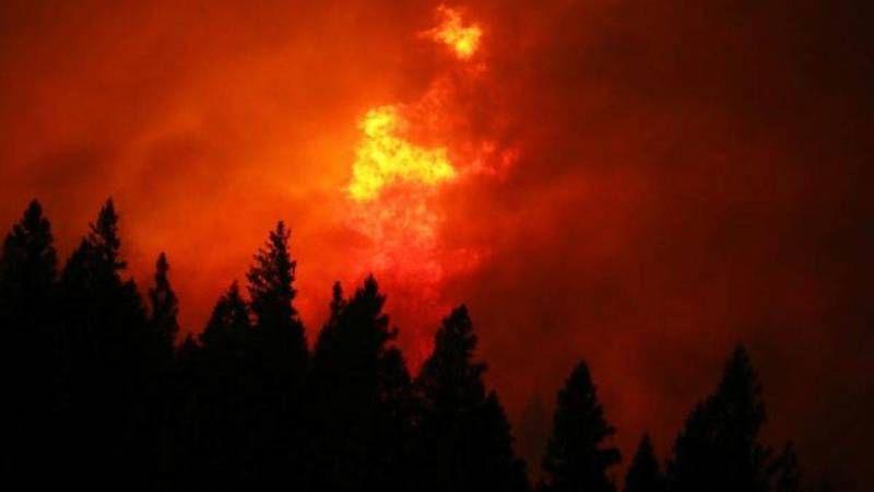 California'da yangının yalnızca yüzde 30'u kontrol altına alınabildi