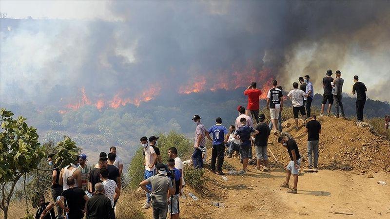 Cezayir'deki orman yangınlarında hayatını kaybedenlerin sayısı yükseldi