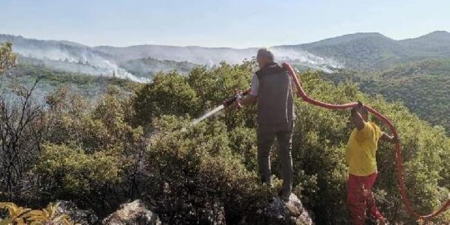 299 orman yangınının tamamı kontrol altına alındı