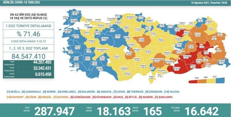 16 Ağustos koronavirüs tablosu! Vaka Sayılarında Son Durum