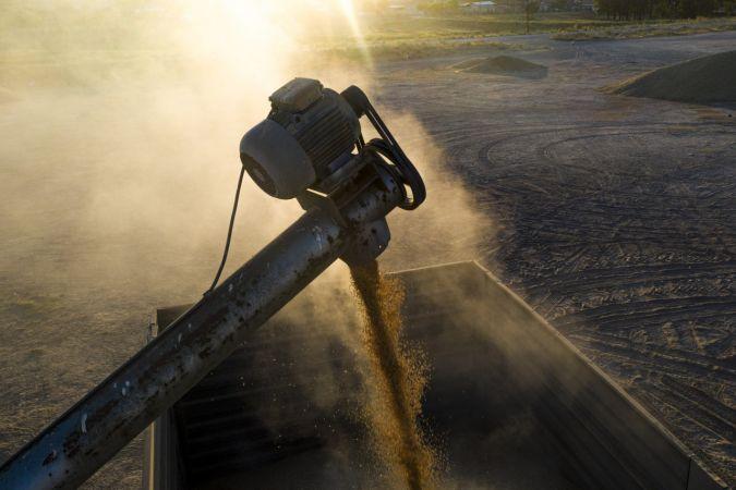 Hububat fiyatıyla çiftçiyi kalitesiyle de un sanayicisini sevindirdi