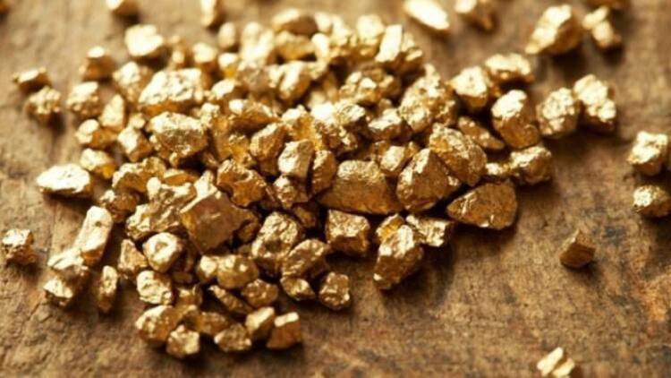 Türkiye'ye altın müjdesi! 10 ilde arıyor