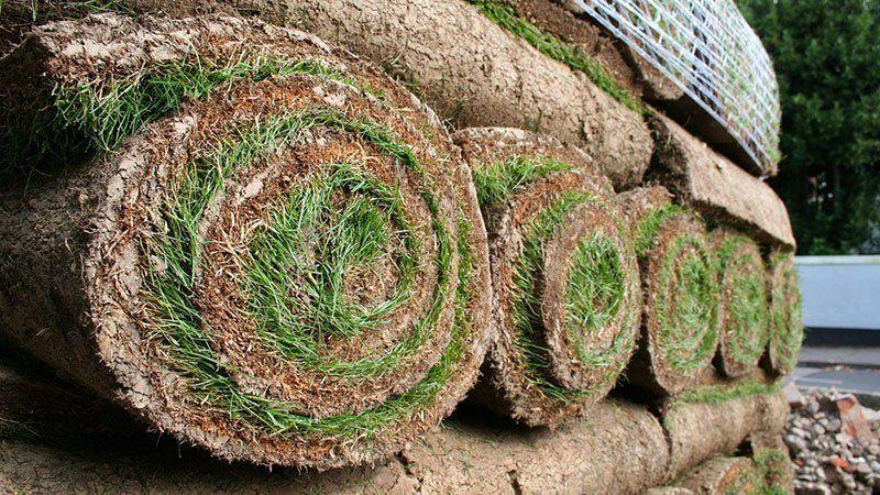 Üçrenk Peyzaj'ın Rulo Çim Uygulaması ile Şık Bahçeler