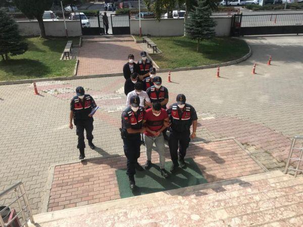 Konya'da sit alanında kaçak kazı yapan 3 kişi suçüstü yakalandı