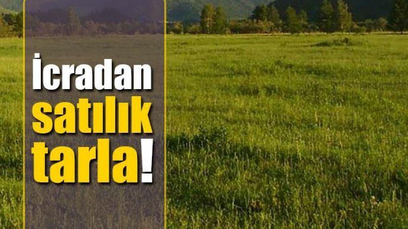 Karaman'da icradan satılık 2685 metrekare tarla