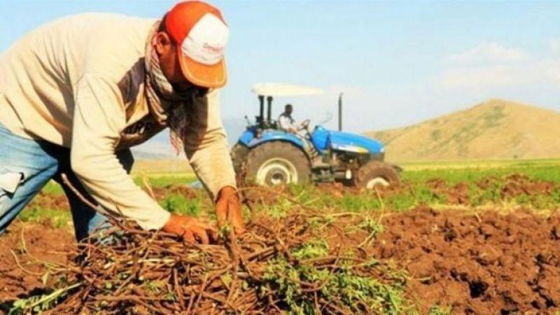 Müdürlük açıkladı: Karaman'da bu çiftçilere destek verilecek!