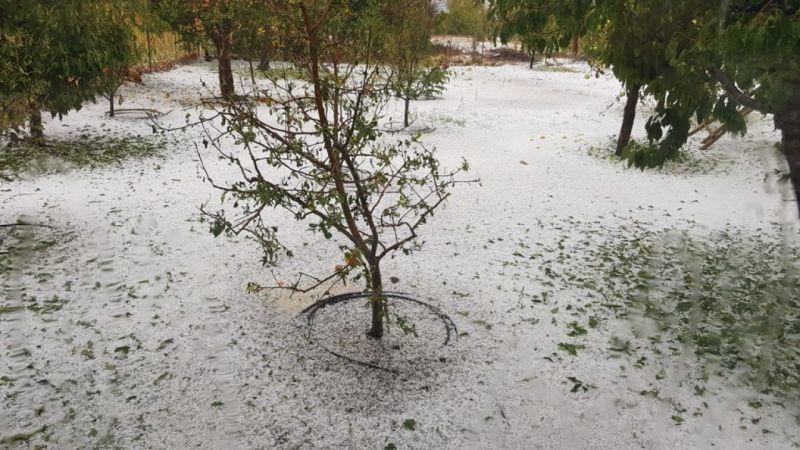 Mersin'de dolu, sebze ve meyve bahçelerine zarar verdi
