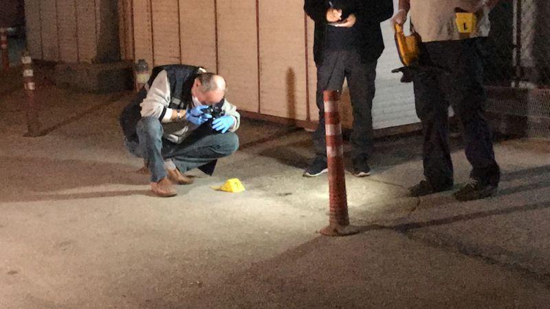 Adana'da bekçilerden kaçarken tabancası ateş alan kişi yaralandı