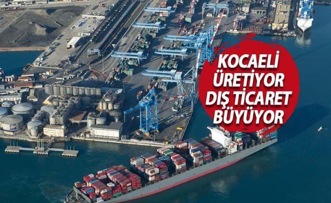 Dış ticaretin yüzde 19,8'i Kocaeli'den