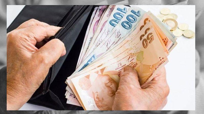 1100 TL PANDEMİ DESTEK SONUÇ EKRANI
