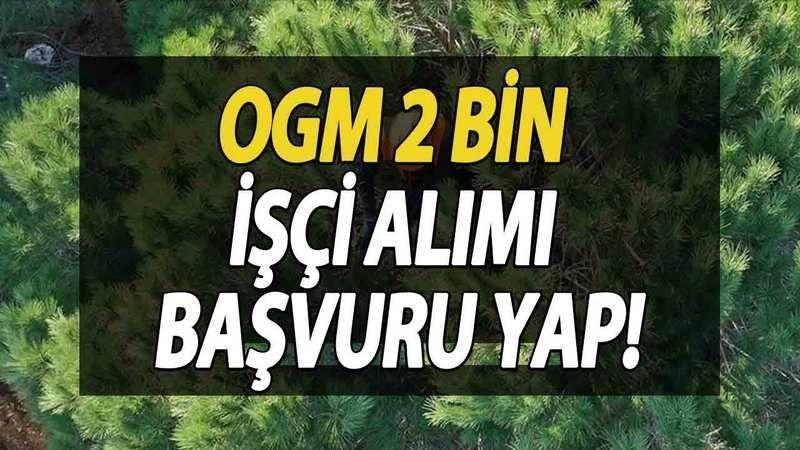 Orman Genel Müdürlüğü İşçi Alımı Şartları, OGM Personel Alımı Başvuru YAP! Orman Genel Müdürlüğü İşçi Alımı 2021 İŞKUR Ekranı!
