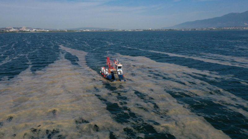 İki Ayda 150 Ton Deniz Salyası! Kocaeli Büyükşehir Dinlenmeden, Çalışıyor...