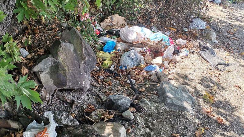 Sapanca Gölü'nde Çöp Yığınları! Bu Ne Hal Komşu: Her Tarafı Çöp Götürüyor...