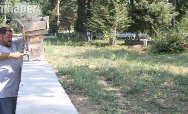 Seyfeler Mezarlığı güzelleşiyor
