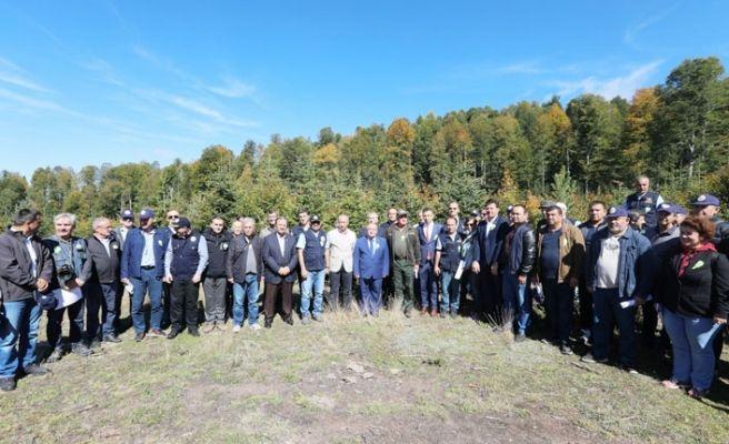 Çeşitli ülkelerden ormancılar Sakarya'da buluştu